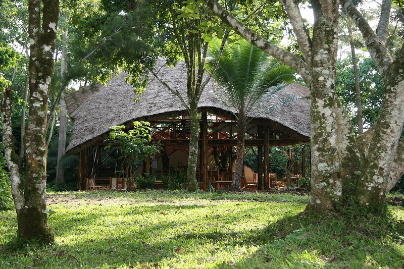 Have a great experience staying in one the tents at Kibale Forest Camp, vacation rental in Kibale National Park