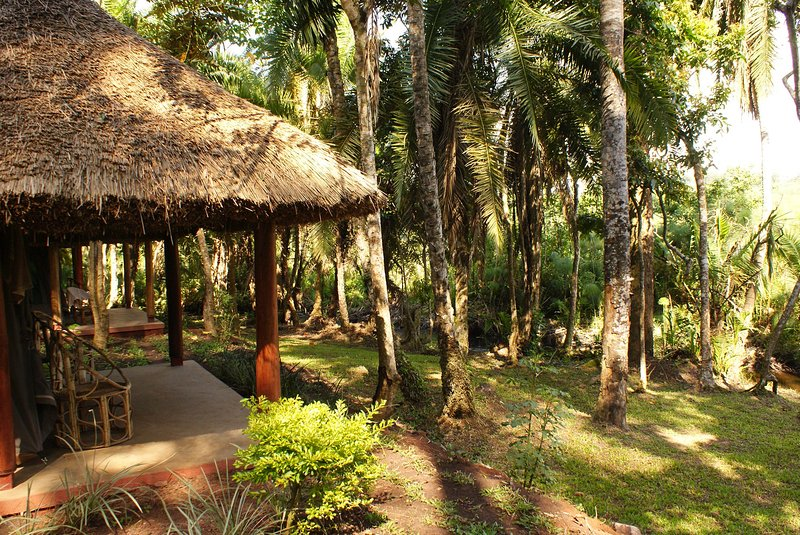 Kibale Forest Camp is where you want to stay when on vacation, vacation rental in Kibale National Park