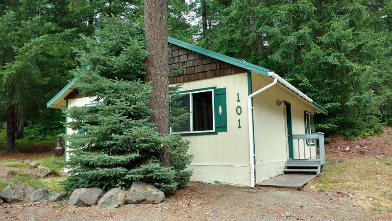 Beautiful Northwest Lodging-Hall Creek Cabin (Affordable Ski Cabin), holiday rental in Packwood