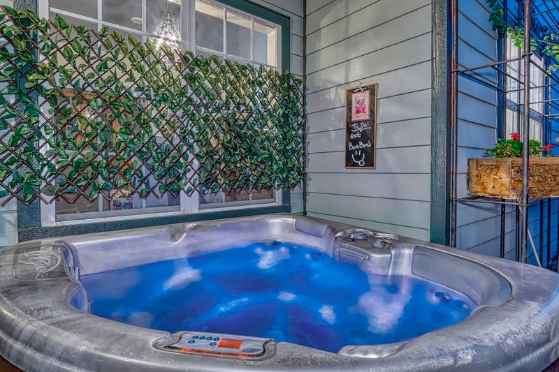 2-4 person spa in the private courtyard - soak & watch the squirrels & birds