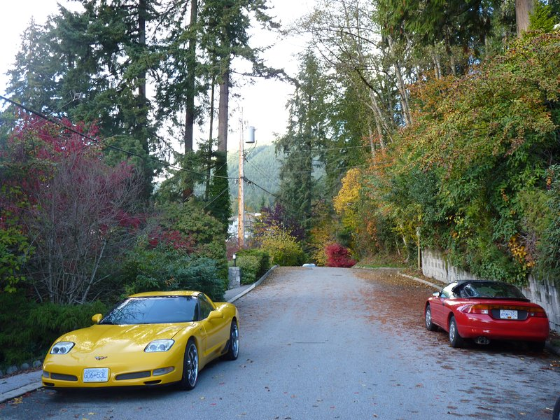 Street in front of the property.  Tons of free parking. Guests may use driveway - quite steep tho!
