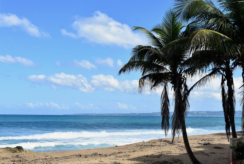 Spiaggia sabbiosa. A soli due minuti a piedi da The Beach Pad.