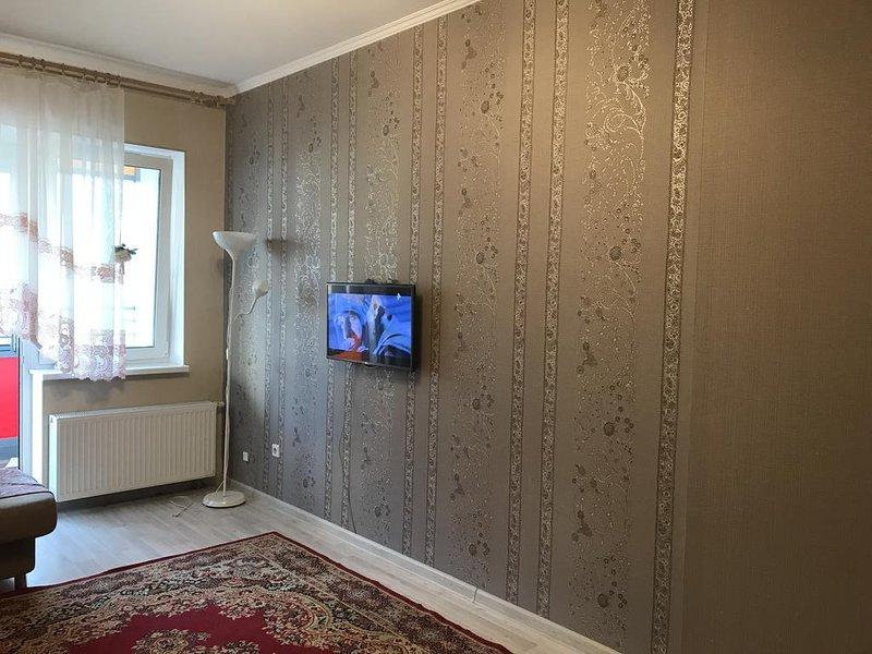 elite flat triumph park, casa vacanza a Pushkin