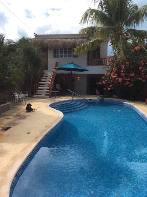Lost Oasis Apartment, holiday rental in Isla Mujeres