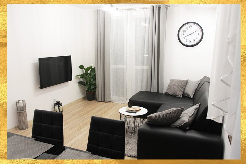 New & Modern Grand Apartment, holiday rental in Silesia Province