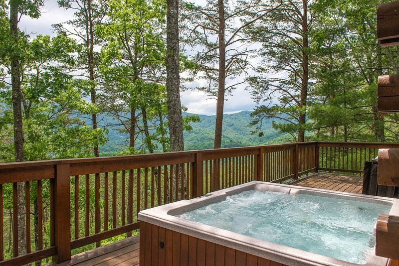 Charming family cabin with private hot tub & secluded location, vacation rental in Townsend
