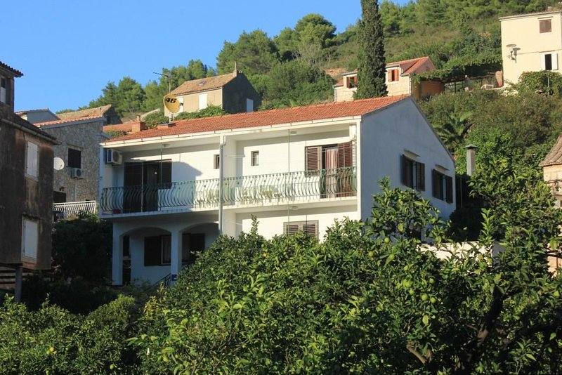 One bedroom apartment Vis (A-2412-a), holiday rental in Vis