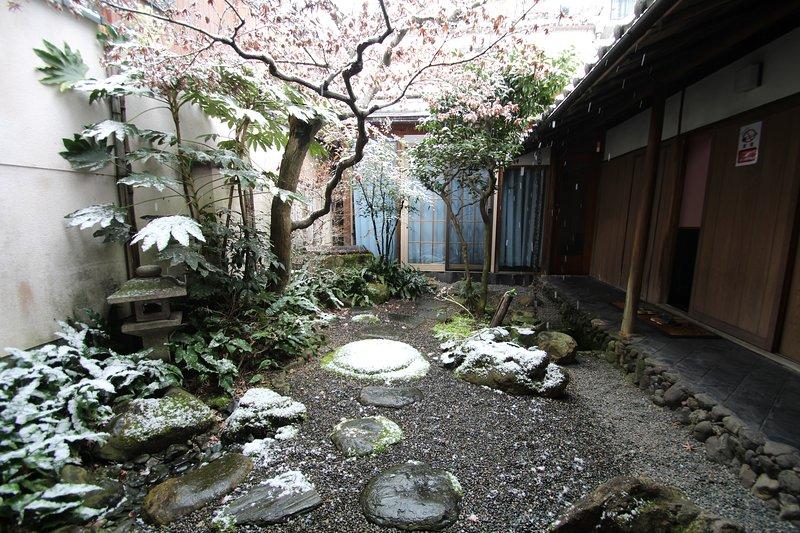 Nosso jardim japonês como visto durante o inverno.