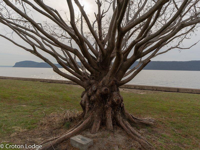 Croton Point Park lungo il fiume Hudson.