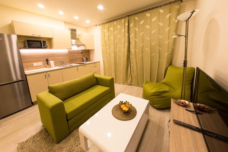Newly build apartment close to center and old town, location de vacances à Trakai