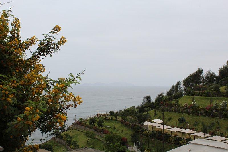 Utsikt från terrassen i La Condesa. Stilla havet.