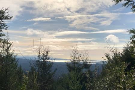 Vista del océano / bahía desde la cima de nuestro sendero privado