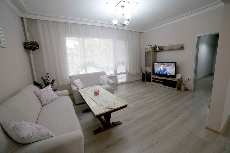 Niko's Apartment, holiday rental in Dedovo