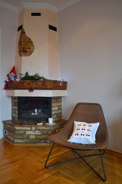 Nuestro super acogedor salón con chimenea.