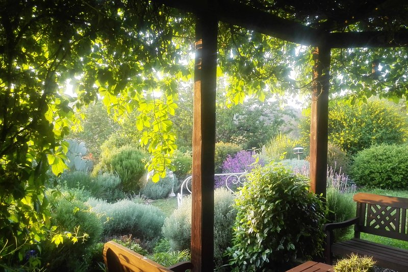 The pergola below your window for meals and relaxation