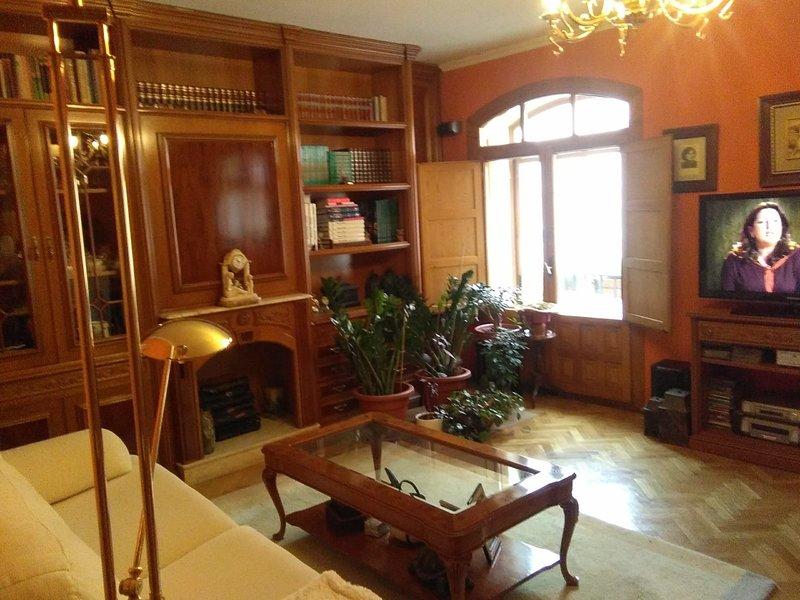 Apartamento centrico, holiday rental in Ortigosa del Monte