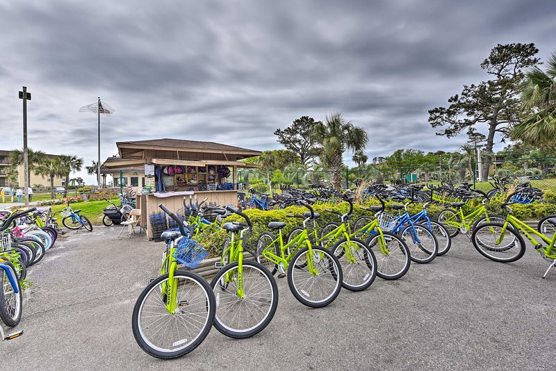 Noleggia le biciclette ed esplora l'isola - fai attenzione agli alligatori!