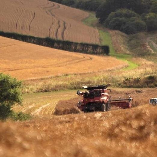 Combining at Cabourne