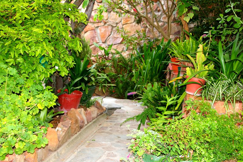 Lush garden path to the cottage