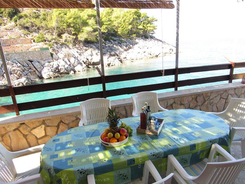 Robinson apartment Smiljanka 1 island Hvar near beach, holiday rental in Gdinj