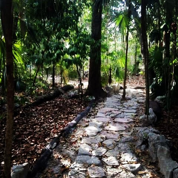 Path to the Shala