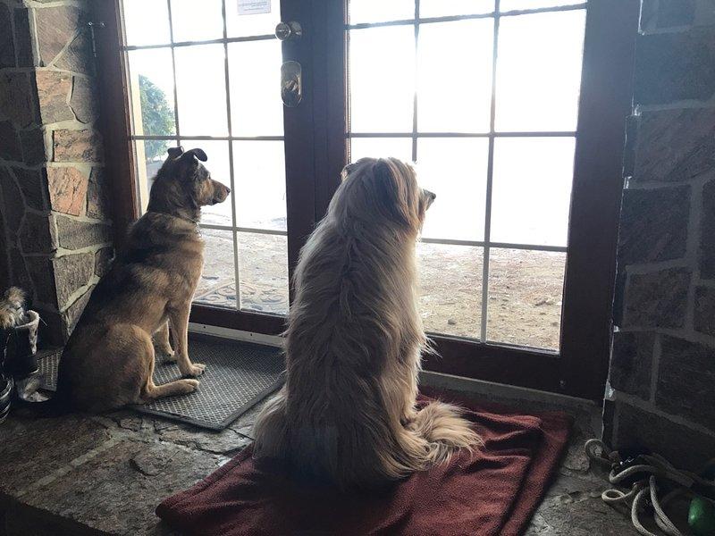 """""""Adoriamo la nostra vista sul lungomare dalle portefinestre in vetro di Blue Heron"""", firmato Chester & Casey"""