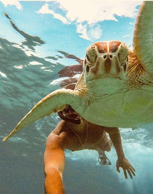 Best snorkeling is steps away
