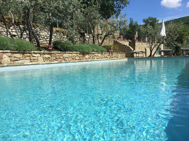 Castello Roccolo - Tuscan Villa With Independent Studio,, aluguéis de temporada em Castiglion Fiorentino