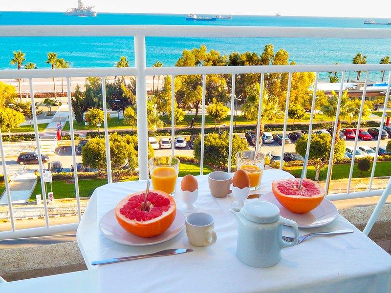 Panoramic Seaview Apartment, holiday rental in Agios Nektarios