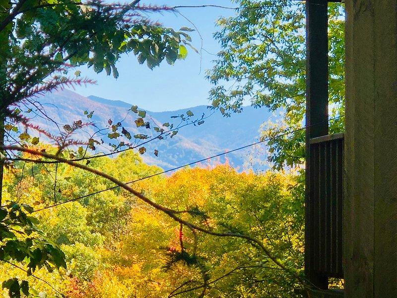 Magnífica vista para a montanha