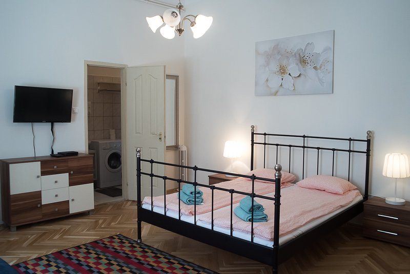 ANGELIKA- Lovely studio flat in the center, holiday rental in Mogyorod