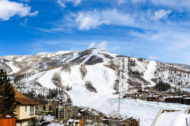 Lovely condo with balcony & full kitchen - easy access to ski lifts Chalet in Steamboat