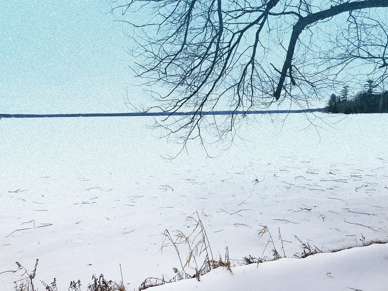 Paradise Lake Private Shoreline