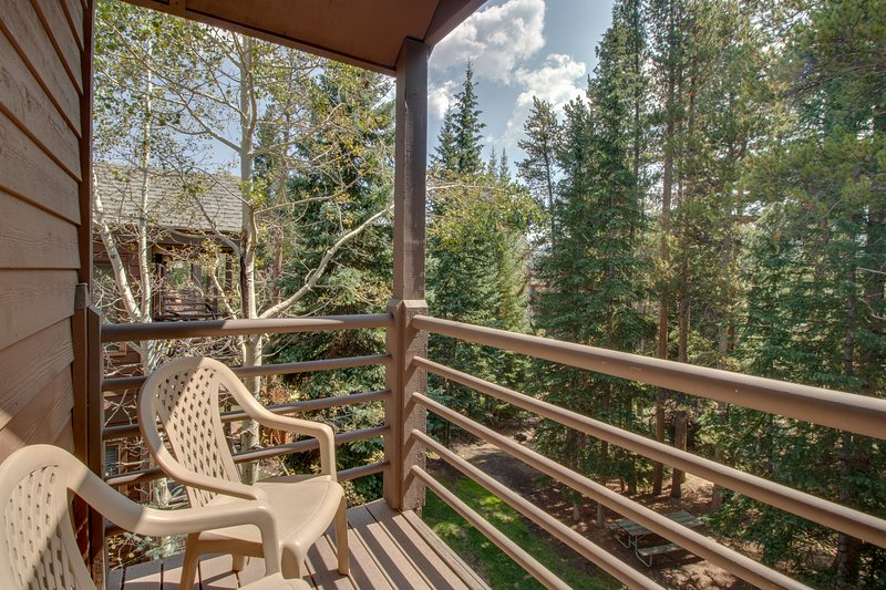 Cozy condo with shared hot tub and sauna, ski-in/ski-out, walk everywhere! Chalet in Breckenridge