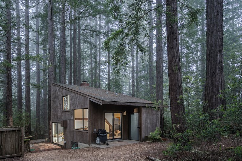 Architectural gem w/ private hot tub, redwood views & shared pools - 1 dog OK!, vacation rental in The Sea Ranch