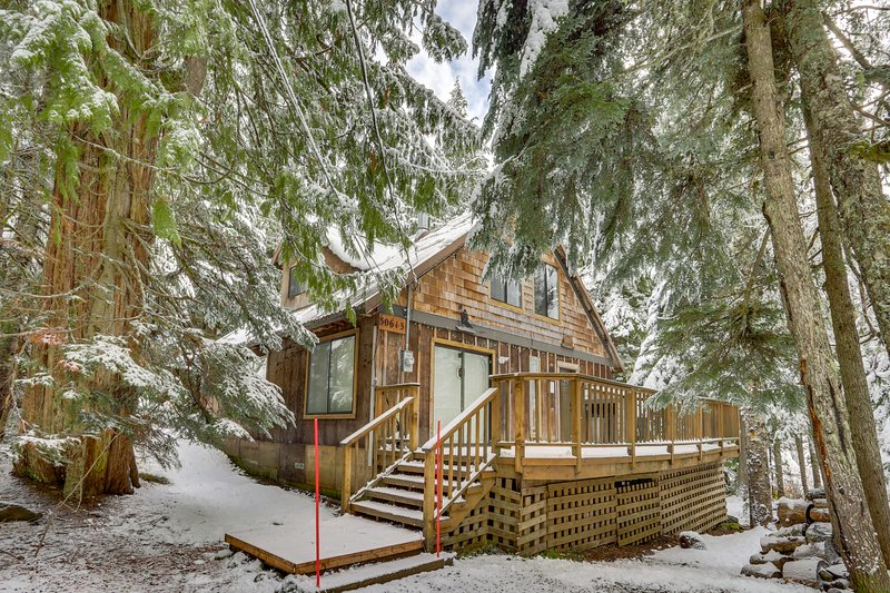 Dog-friendly cabin within walking distance to Mt. Hood Ski Bowl West!, holiday rental in Government Camp