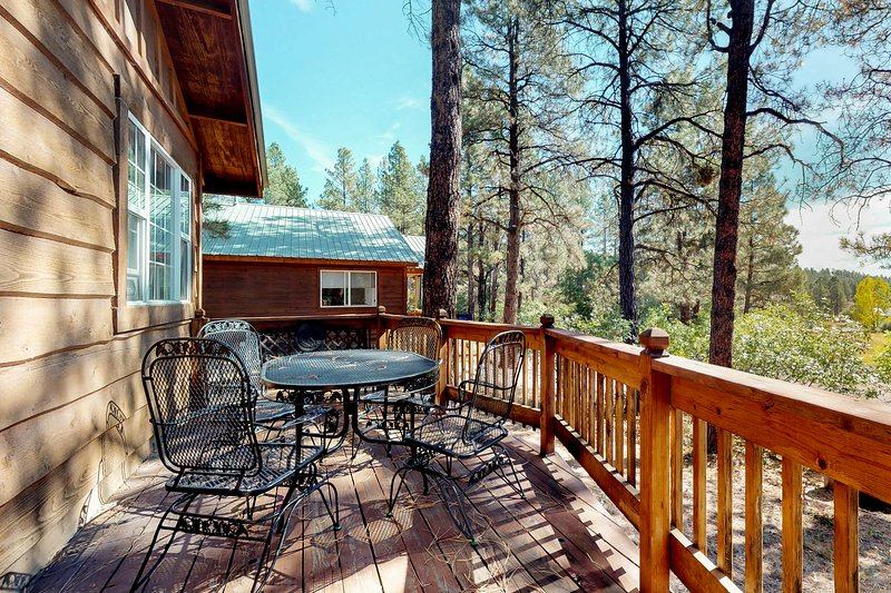 Charming, dog-friendly cabin in the forest - near parks, skiing & hot springs, holiday rental in Pagosa Springs
