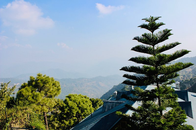 The Sonnet ménage is in the heart of Kasauli yet nestles quietly amongst rustling pines.