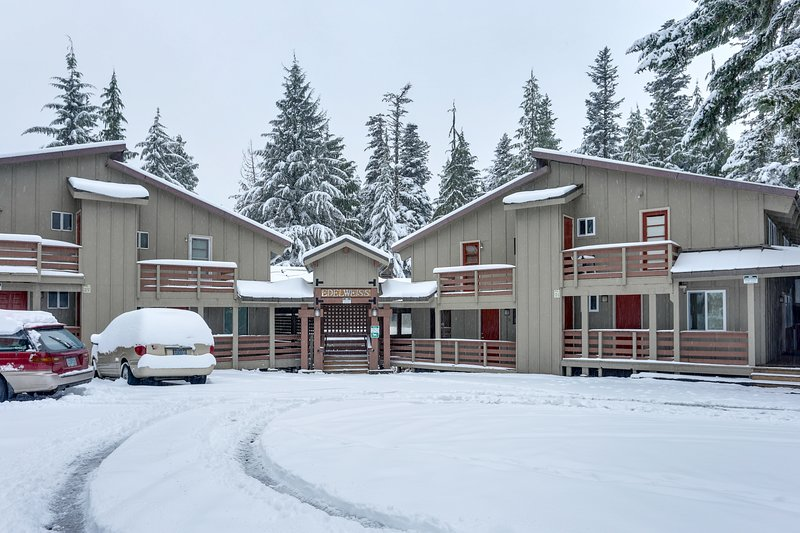 Comfortable, cabin-style condo, near skiing & attractions - dogs welcome!, holiday rental in Timberline Lodge