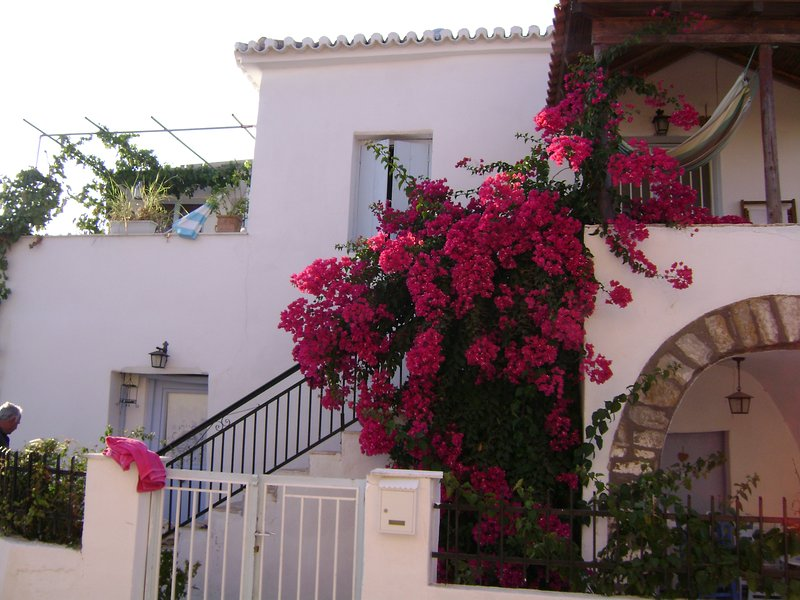 Beautiful house with garden & Wifi, holiday rental in Tapia