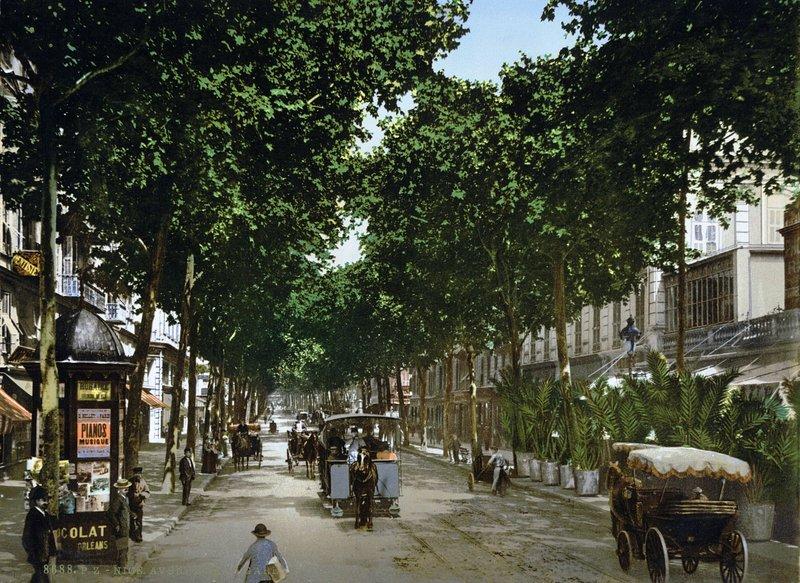 Avenue Jean Médécin à la fin du 19ème siècle