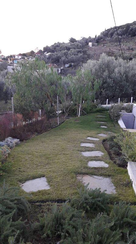 Green glass laid garden