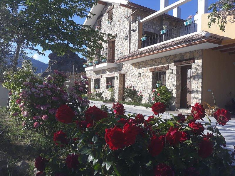 Finca Los Villegas, holiday rental in Hinojares