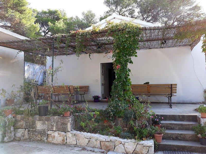 Maranovici Apartment Sleeps 4 with Air Con - 5463548, holiday rental in Saplunara