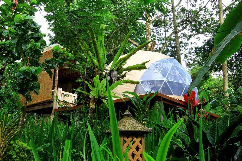 Bali Jungle Camping, holiday rental in Pekutatan