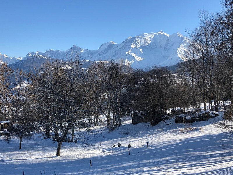 Combloux, nice apartment in front of Mont-Blanc, holiday rental in Combloux