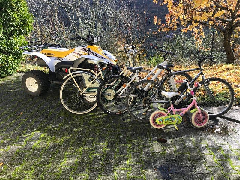 biciclette - uso gratuito