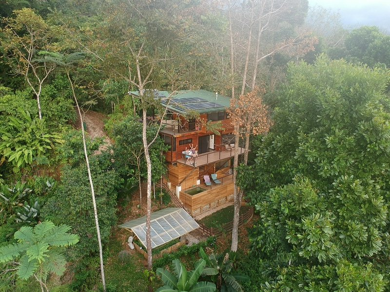 The Fusion Home | Award Winning Treetop Paradise! – semesterbostad i Piedras Blancas