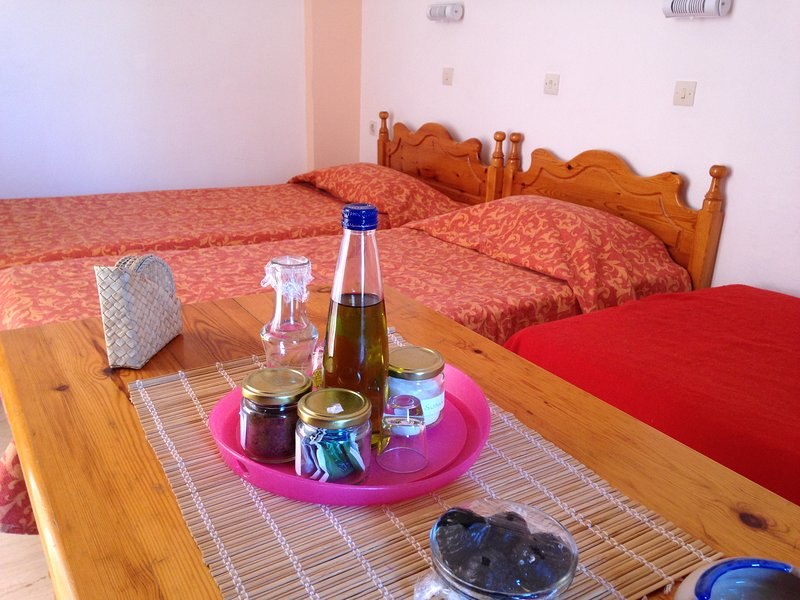 Labyrinth Studios for relaxation 3, holiday rental in Mariou