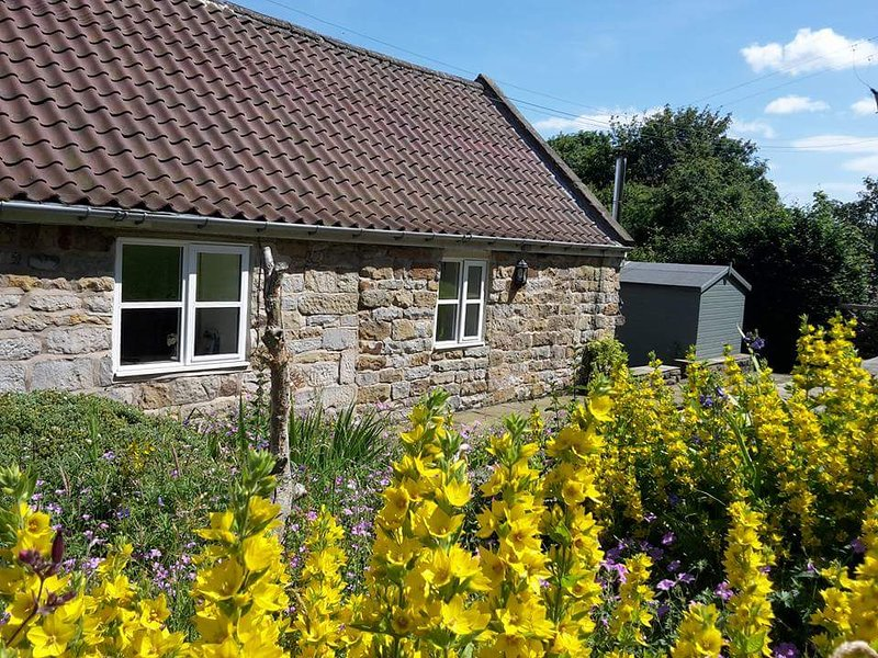 Underhill Holiday Cottage, holiday rental in Briggswath